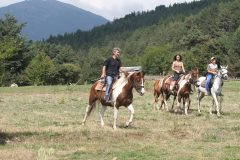 Lucky Bansko Aparthotel SPA & Relax | Horse riding during Lucky Fit