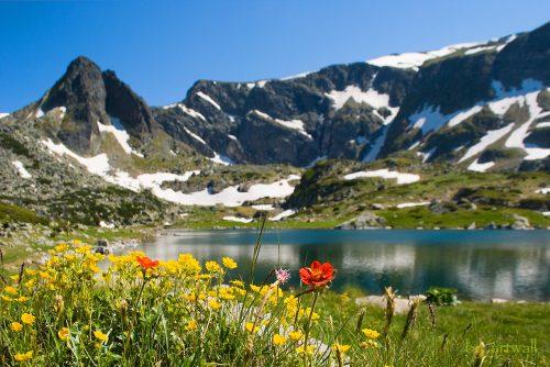 View to the mountain | Lucky Bansko