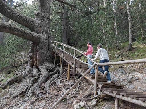 Trip to the Baikusheva Mura | Lucky Bansko