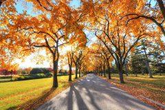 Autumn in Bansko | Lucky Bansko SPA & Relax