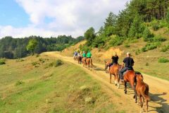 Horse riding in the mountain in Bansko | Lucky Bansko